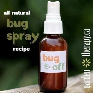 Bug Off Square Small1 300x300 All Natural Bug Spray Recipe