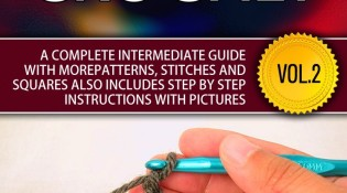 Free today - Learn to Crochet eBook - Desperate Houselife